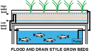 Flood and drain grow bed
