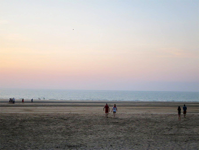 Casuarina Coastal Reserve - Beach