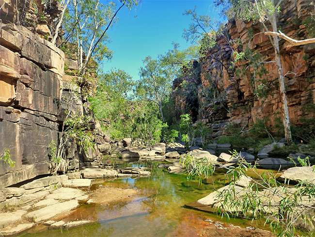 Umbrawarra Gorge Nature Park - rocky pool