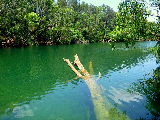 Giwining / Flora River Nature Park