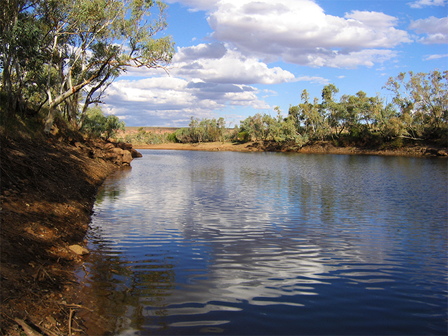 Iytwelepenty / Davenport Ranges - Creek
