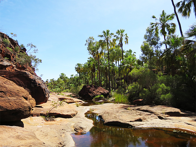 Finke Gorge National Park - Mpulungkinya walk