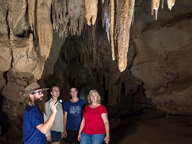 Cutta Cutta Caves Nature Park - Cave exploring