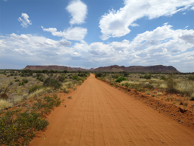 Tnorala Conservation Reserve - dirt road